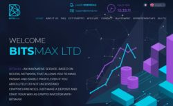 Bitsmax review