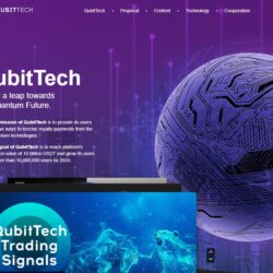 QubitTech review